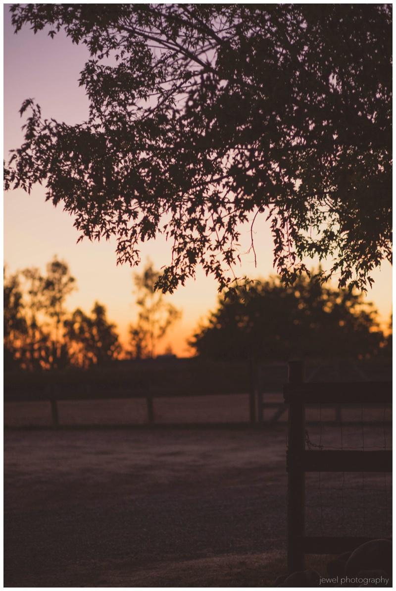 wedding-country-wilton-sacramento_0236