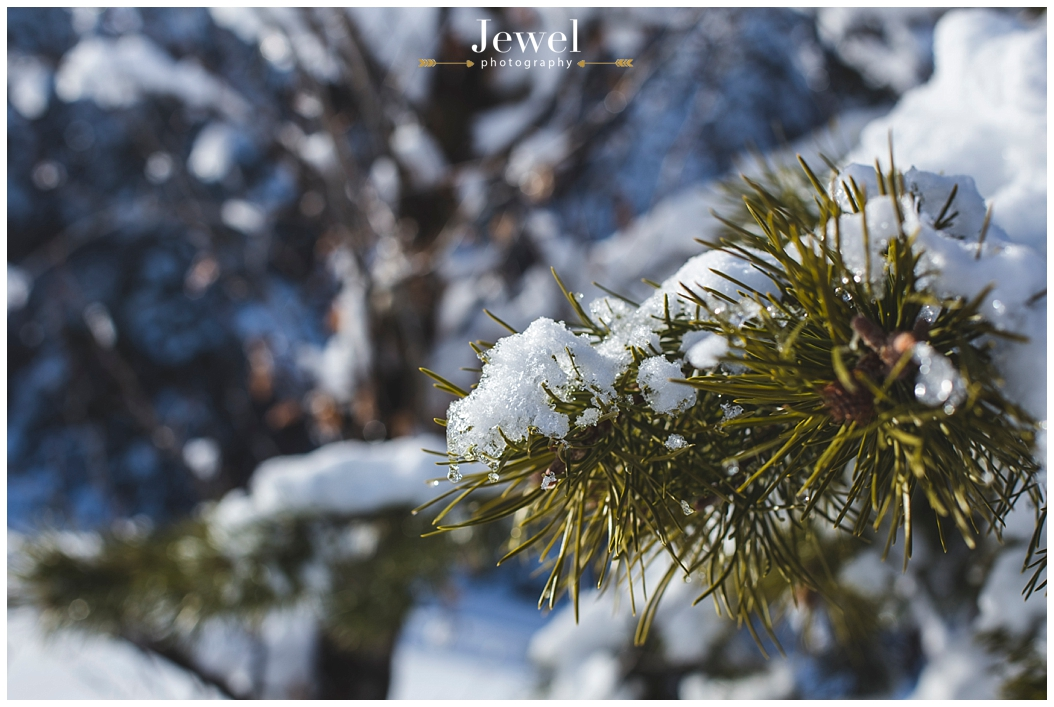 engagement-snow-mountain-tahoe-photographer_0864