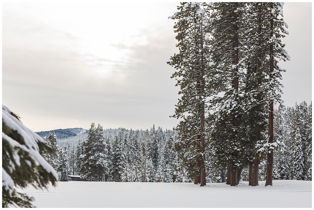 engagement-snow-mountain-tahoe-photographer_0871