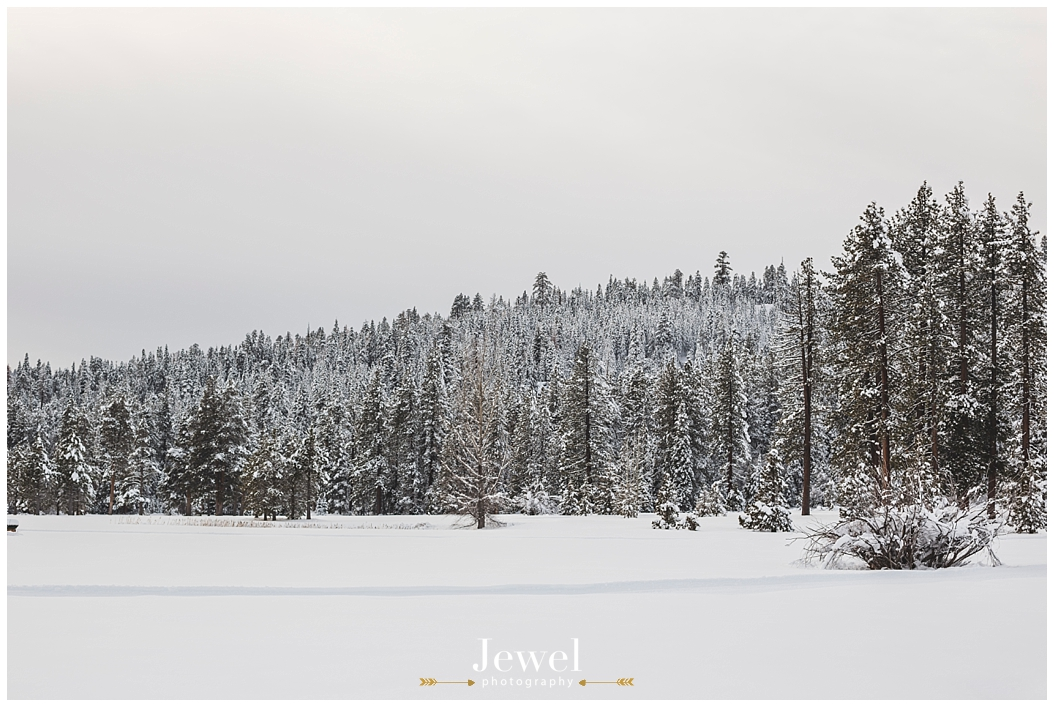 engagement-snow-mountain-tahoe-photographer_0874
